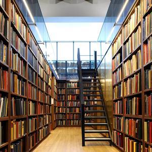 Библиотеки Каменска